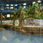 universo-tropical-aquarium-barcelona